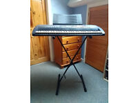 CASIO LK-50 Key-lighting keyboard and stand | £55