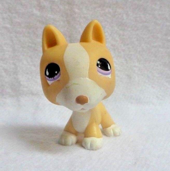 Littlest petshop lps #860 hasbro chien bull terrier beige blanc yeux violet lune