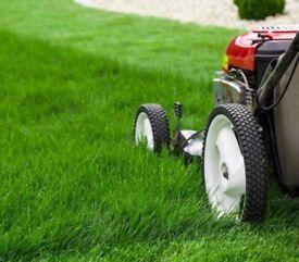 Grass cutting garden services