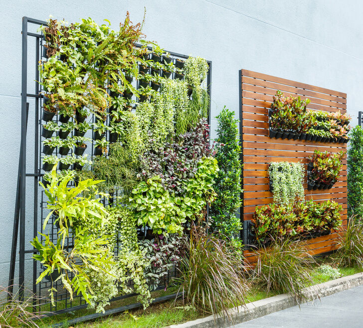 How to create a vertical garden ebay - Small space farming image ...