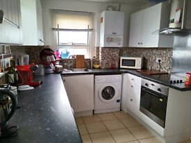 2 Bedroom Apartment With A Big Garden In Newhaven For Share