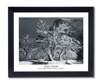Ansel Adams B/W Photo Wall Picture Blk Framed Art Prints