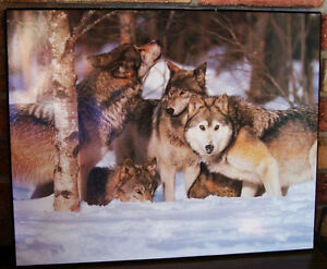 Wolf Pack Picture