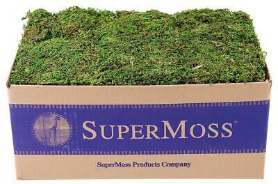 SuperMoss (23805) Mountain Moss Preserved, Appx. 3 lb Bulk Case, Fresh Green