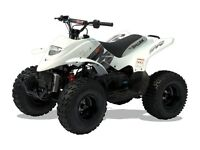 "*Brand New"" Quadzilla 100cc Pro Shark Quad Kids /ATV. Free delivery"
