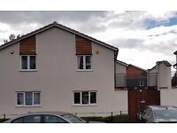 2 Bedroom semi detached property in Freemens Meadows for RENT