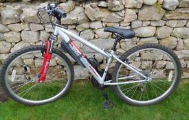 Small adult/ teenager bike