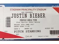 JUSTIN BIEBER CARDIFF: One ticket: Pitch