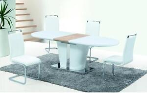 DINING TABLE AND CHAIR SET | DINING TABLE SET SALE (GL2233)