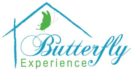 Butterfly education Franchise for sale