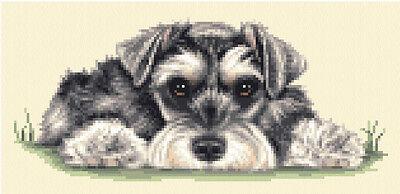 MINIATURE SCHNAUZER dog, puppy -  full counted cross stitch kit