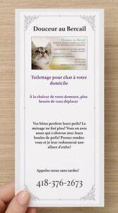 Toilettage pour chat à votre domicile Saguenay Saguenay-Lac-Saint-Jean image 2