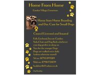 ***Home from Home Dog Boarding and Day Care for Small Dogs ***
