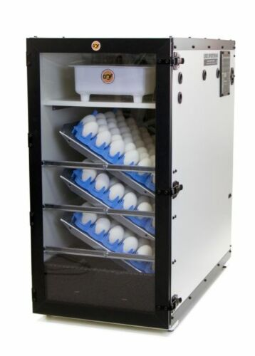 NEW GQF 3065R - Clear Viewing Door for New Cabinet Incubators Hardware Included