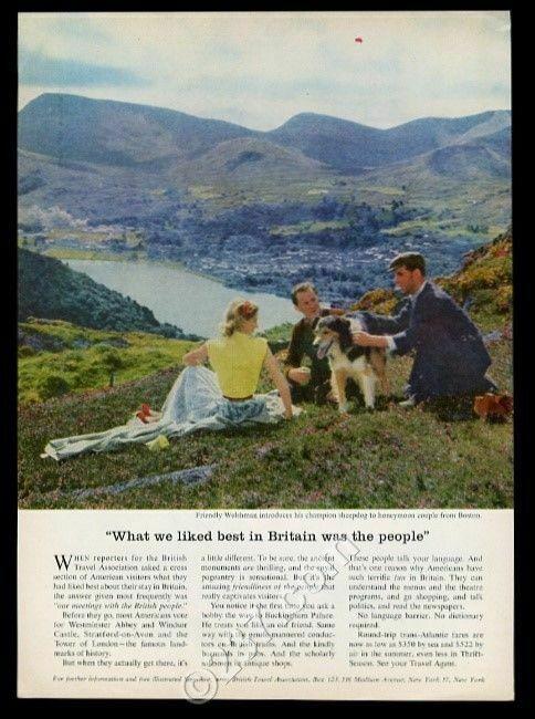 1956 Welsh sheepdog photo Wales UK travel vintage print ad