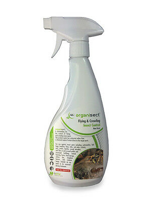 SILVERFISH KILLER READY TO USE PEST CONTROL INSECT SPRAY