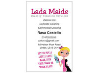 Quality Domestic and Commercial Cleaning Services - Lada Maids