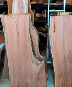 Bloodwood Slab Bunya Brisbane North West Preview