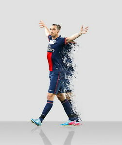 030 Zlatan Ibrahimovic - Swedish Professional Striker Footballer 14