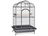 Parrot / bird cage