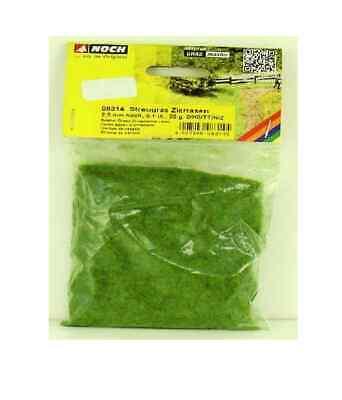 Erba verde chiaro PRATO INGLESE 20 gr No08314