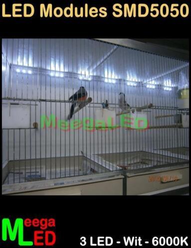 ≥ LED verlichting - TC420 - kweekkooi broedkooi vogelkooi - Vogels ...