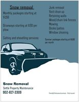 Snow plowing. Snow removal