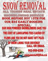 Snow blowing Service. Safe money on the Spring Landscaping!!!