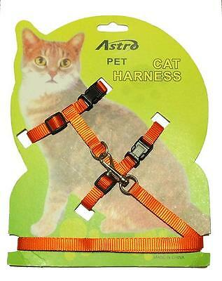 ORANGE Adjustable Nylon Pet Cat Harness and Leash ~ Kitten Belt Collar with lead