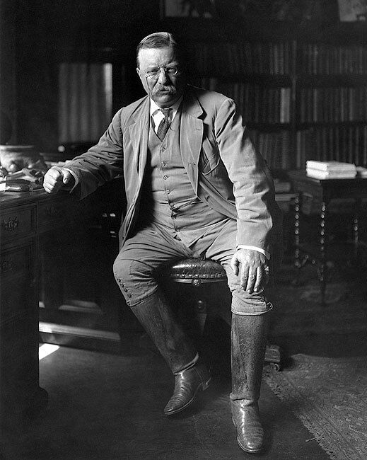 PRESIDENT THEODORE ROOSEVELT LIBRARY 8x10 SILVER HALIDE PHOTO PRINT