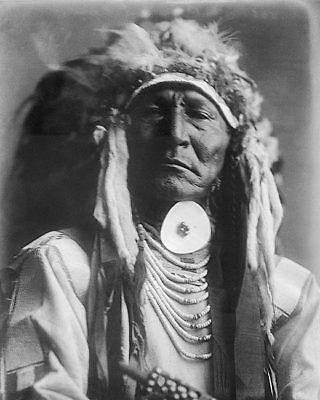 CROW INDIAN BEAR CUT EAR EDWARD S. CURTIS 11x14 SILVER HALIDE PHOTO PRINT
