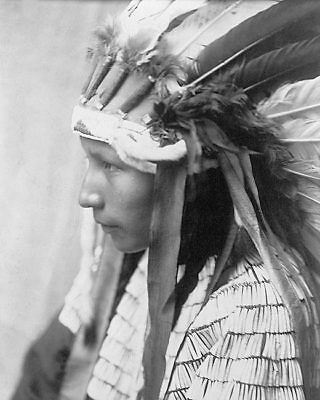 DAUGHTER OF BAD HORSE EDWARD S. CURTIS 11x14 SILVER HALIDE PHOTO PRINT