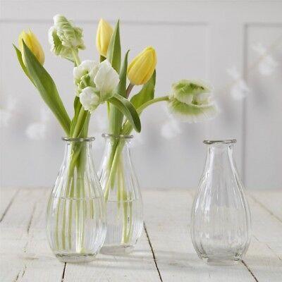 3 Vidrio Transparente Floreros de Bud ,Mini Botellas, Vintage Decoración de Boda