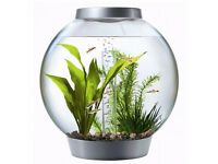 Baby Biorb Water Feature / Fish Tank + Coral Reef