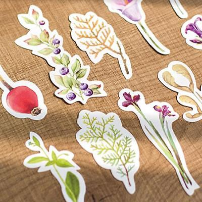 30Pcs Lot Plants Book Marks Paper Bookmark Stationery Office Gifts Q