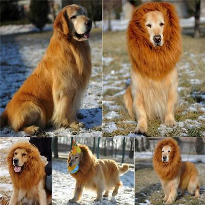 Creative Pet Costume Lion Mane Wig Hat Dog Cat Halloween Party Funny Dress - Creative Funny Halloween Costume