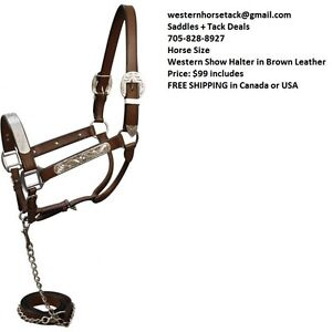 Western Show Halter Engraved Silver Bar BROWN Leather NEW London Ontario image 1