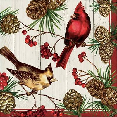 Winter Cardinal 3-Ply Lunch Napkins 16 Pack Winter Christmas Party Decoration](Cardinal Party Supplies)