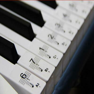 Best Transparent Piano Key Note Keyboard Stickers Learn Teach to Play Music (Best Keyboard To Learn Piano)