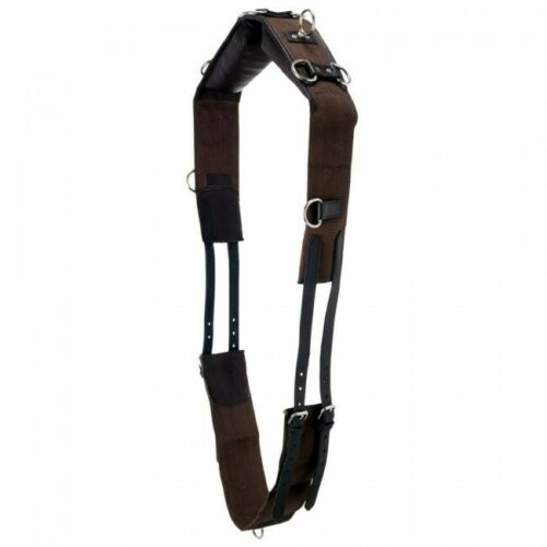 Canvas & leather draft horse/Warmblood training/lunging surcingle w/12 rings
