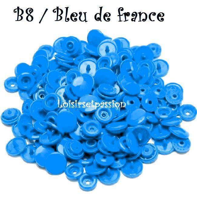 Couleur B8 / BLEU de FRANCE