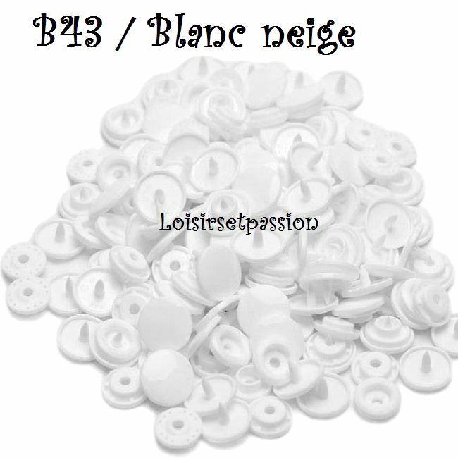 Couleur B43 / BLANC NEIGE