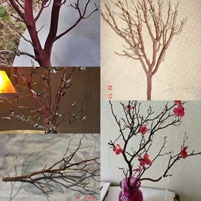 12 RED Manzanita Branches for Vertical Centerpieces  20