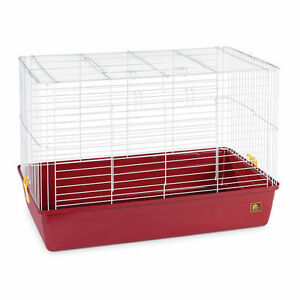 Small rodent cage with exercise wheel, water bottle and feeddish