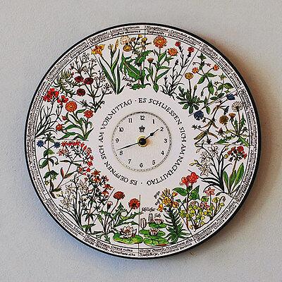 BLUMENUHR Carl von LINNÉ Design-UHR MIT WEGWARTE WUNDERBLUME SEEROSE 29x29cm