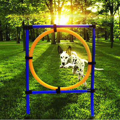 Pet Agility Set Training Dogs Outward Outdoor Play Hurdle Jump Hoop Pole US