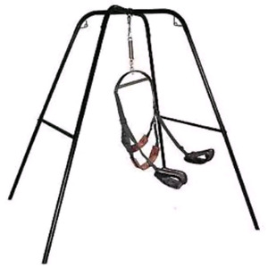 New adult swing and standing stand