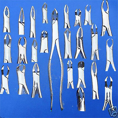 100 Extracting Forceps Extraction Dental Instruments Lot
