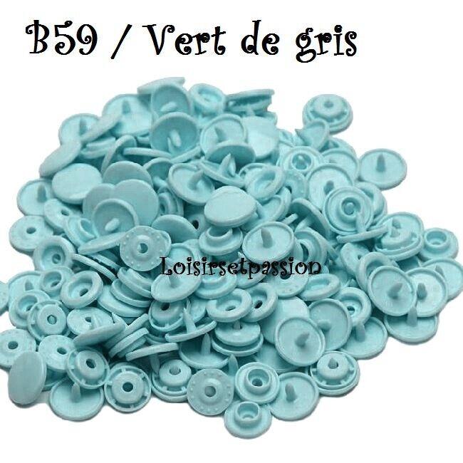Couleur B59 / VERT de GRIS