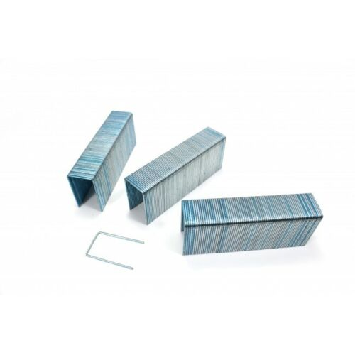 "7/8"" PASLODE 15/16 CROWN GALVANIZED STAPLES 10,000/CASE"